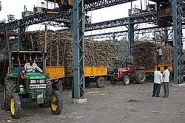 suggestion to maharashtra sugar mills to reduce production