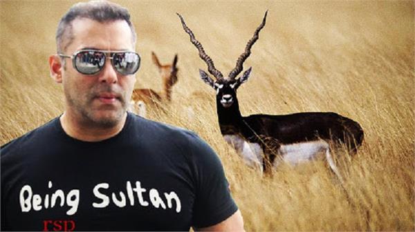 salman khan hearing kankani deer killing case jodhpur court