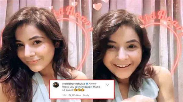 shehnaaz gill uses sidharth shukla s instagram filter