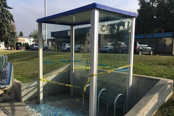 80 bus shelters smashed across edmonton