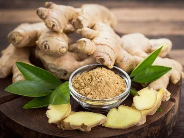 ginger body ear pain stomach benefits