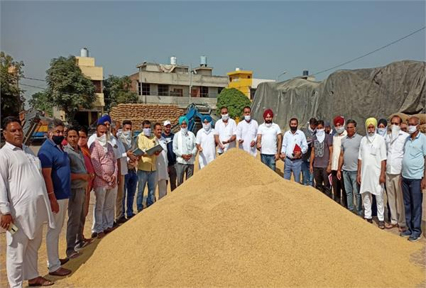 sultanpur lodhi  paddy  procurement