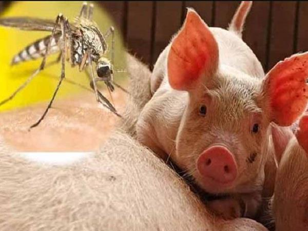 after corona china s cq virus could now become a threat to the world