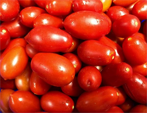 tomatoes are now killing pockets prices skyrocket