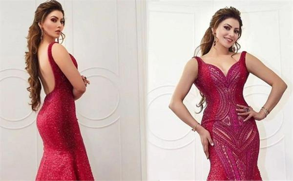 knowing the price of urvashi rautela  s backless dress