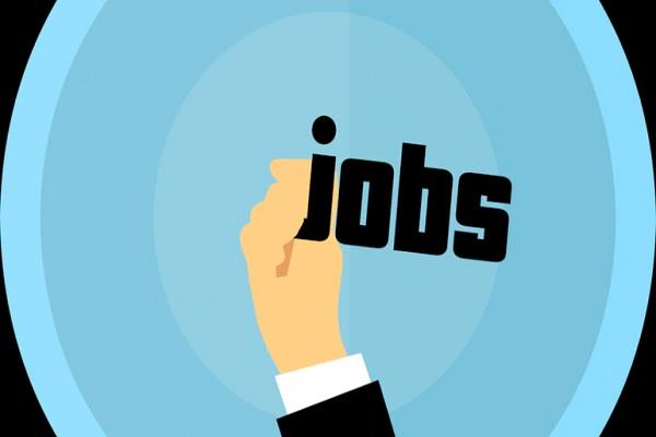 aiims recruitment apply candidate interview