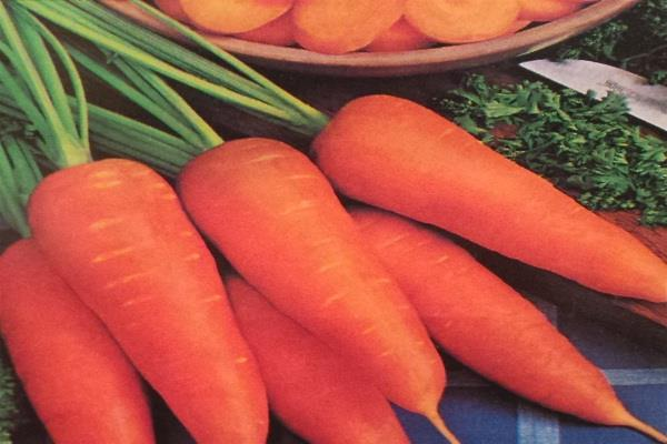 eat carrots in winter there will be other benefits besides increasing eyesight