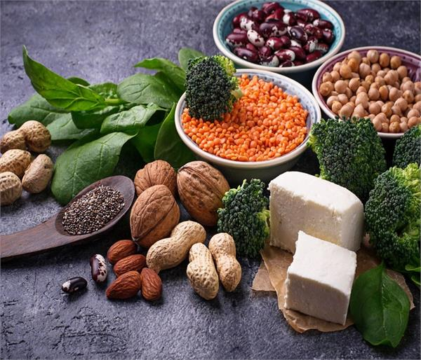 protein is very important for health strengthening the immune