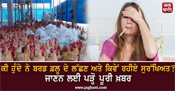 bird flu and how to stay safe read the full news to find out