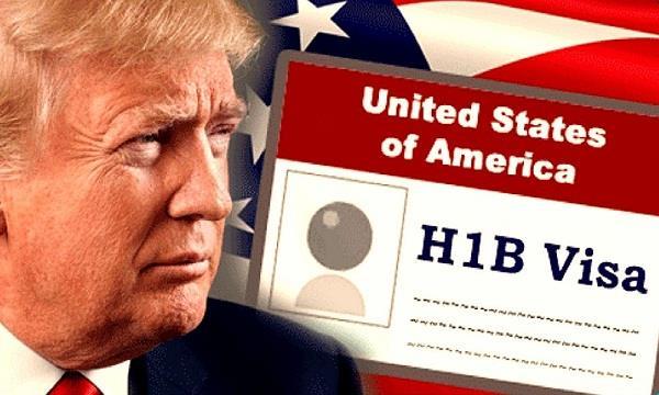 donald trump  h 1b visa