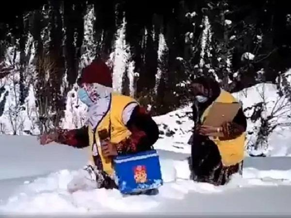 kashmiri women video viral snow