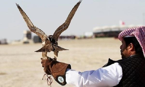 imran khan  dubai  royal family  birds
