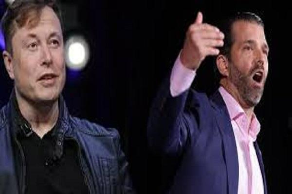 appeal to donald trump s son alan musk