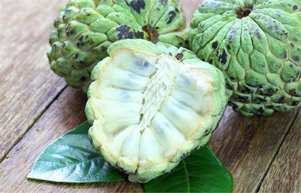 be sure to include custard apple in your diet  these problems  including anemia
