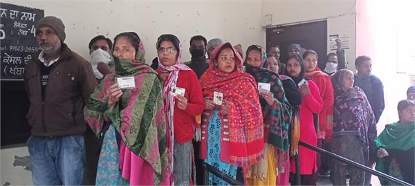 kapurthala voting municipal elections