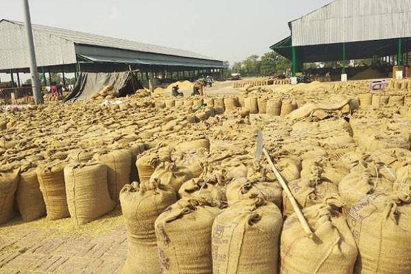 new crop payment