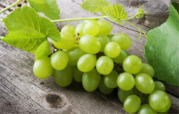 heart attack diabetes green grapes