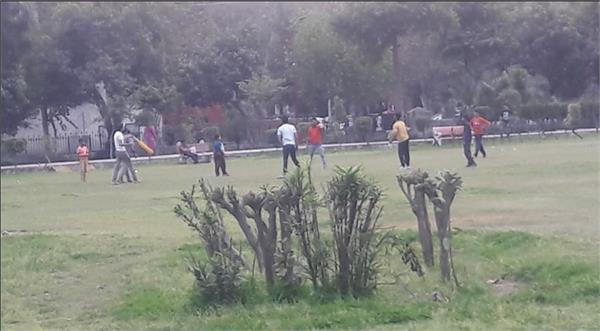 street cricketers bad round garden beauty people injured