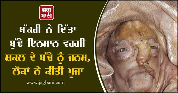 goat gave birth to a child of old human appearance in gujarat