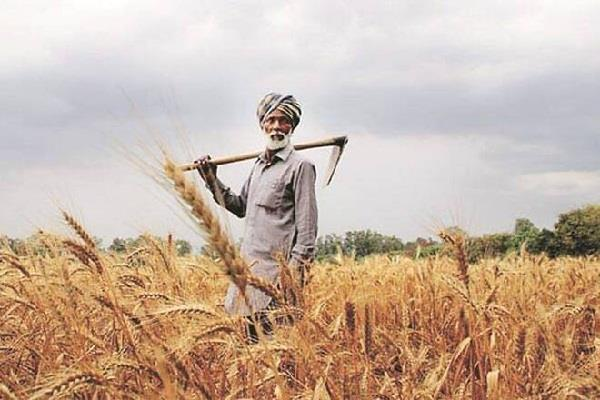 for prosperity the farmer has to become an entrepreneur