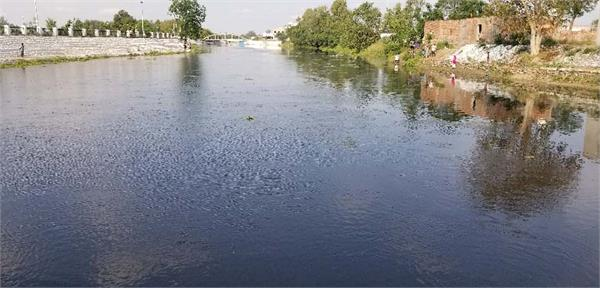 sultanpur lodhi poison water fish