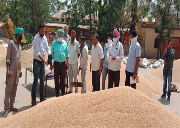sdm  mandis  procurement arrangements  bhavanigarh