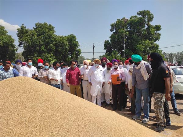 sukhjinder singh randhawa  wheat  markets