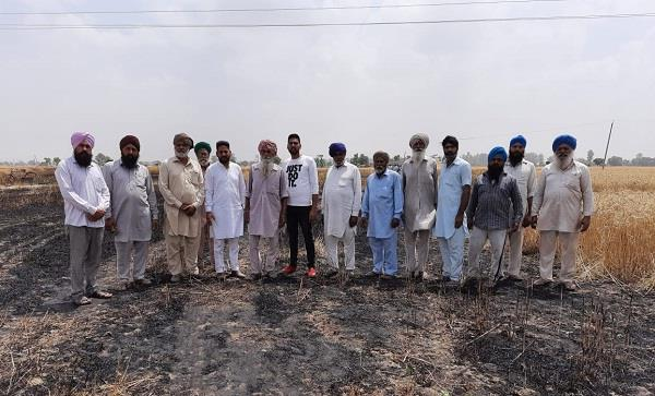 5 and a half acres wheat of farmers at village chuharchak burnt