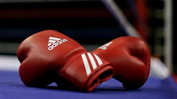 in world youth boxing  7 more indians reached the semifinals