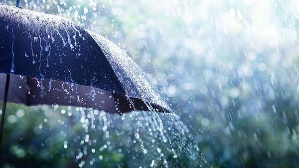 light rains in punjab and haryana