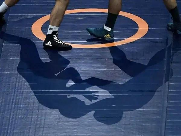 wrestling  out of dhankhar  qadian and malik reach quarterfinals