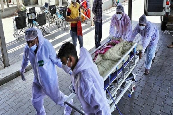 coronavirus punjab positive cases deaths