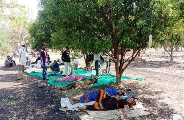 madhya pardesh under trees treating corona patients