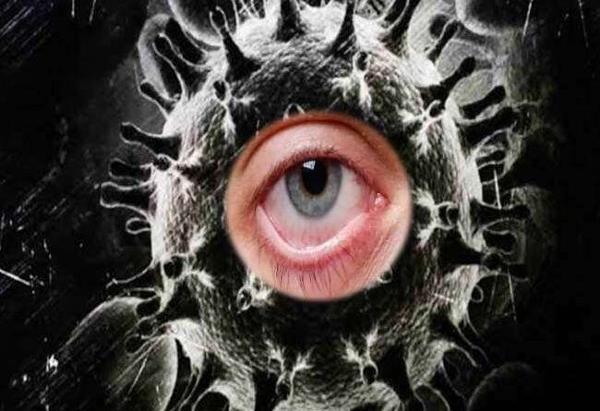brain diabetes black fungus diseased eyes