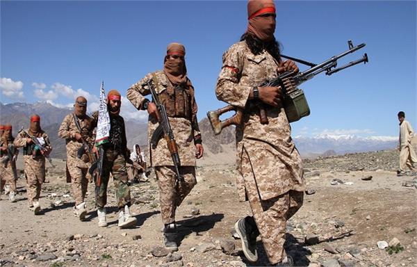 taliban militants kill 5 police officers
