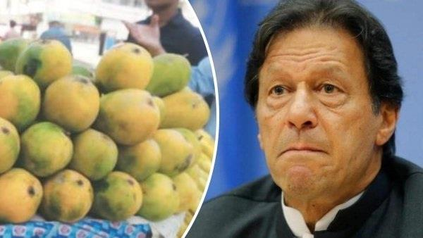 pakistan mango diplomacy china and usa