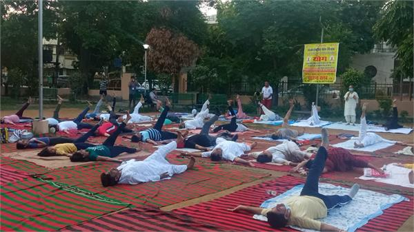 international yoga day jalandhar