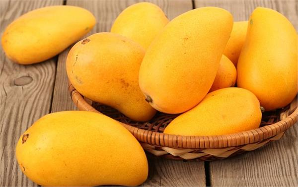 high blood pressure  weight loss  mango  benefits