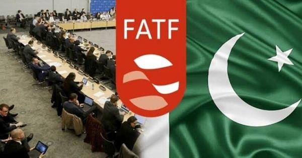 pakistan has made significant progress on fatf  s first action plan