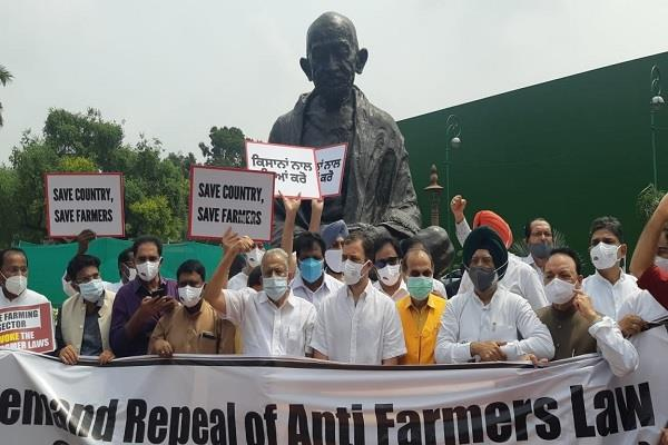 congress mps led by rahul demonstrated against agricultural laws