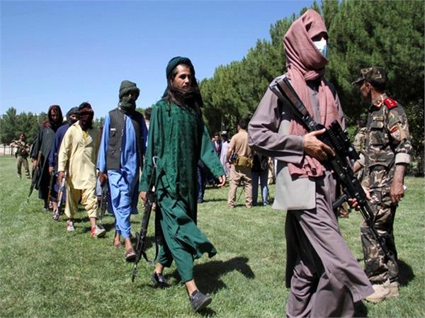taliban continue to roam freely in pakistan lawmaker