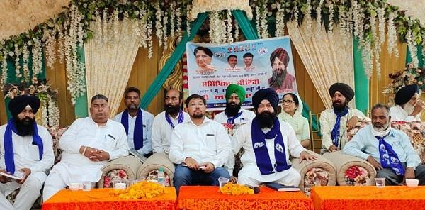 bsp will not tolerate insulting words  garhi
