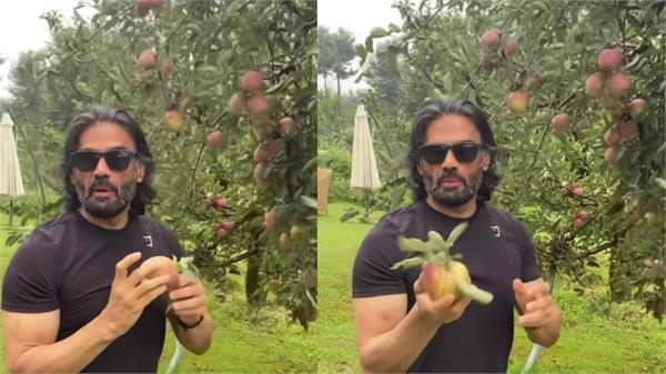 video shared by sunil shetty breaking apples fans love it